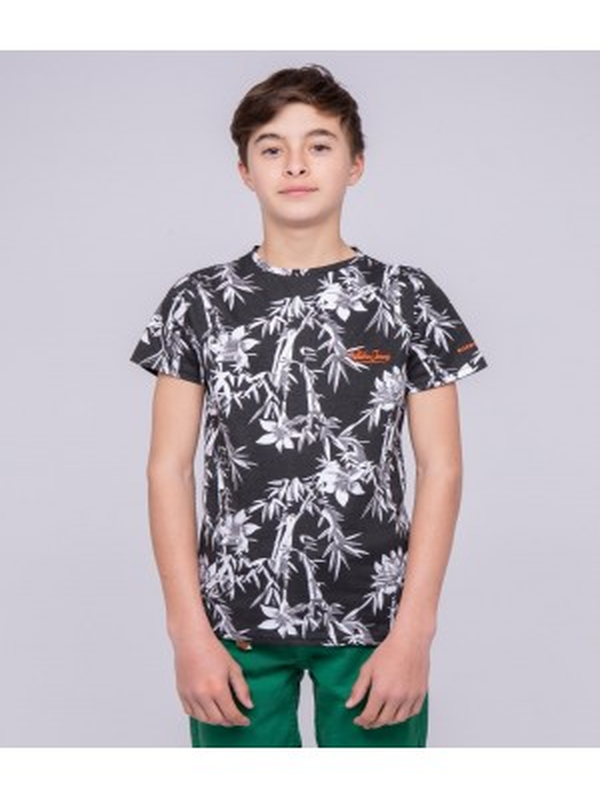 T-shirt col rond pur coton motifs NASCHOOL-J